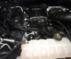 2015 Ford F-150 5.0 Coyote Roush Supercharger Install by Ed & Me